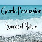 Play & Download Gentle Persuasion Sounds of Nature by The O'Neill Brothers Group | Napster