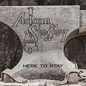 Play & Download Here to Stay by Adam Steffey | Napster