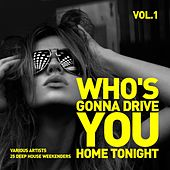 Who's Gonna Drive You Home Tonight (25 Deep-House Weekenders) Vol. 1 by Various Artists