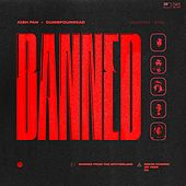 Play & Download Banned in the Motherland (feat. Jay Park, Simon D, G2) - Single by Dumbfoundead | Napster