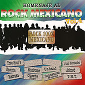 Homenaje Al Rock Mexicano Vol.4 by Various Artists