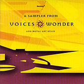 Play & Download Sampler From Voice Of Wonder / Metal Art Disco by Various Artists | Napster