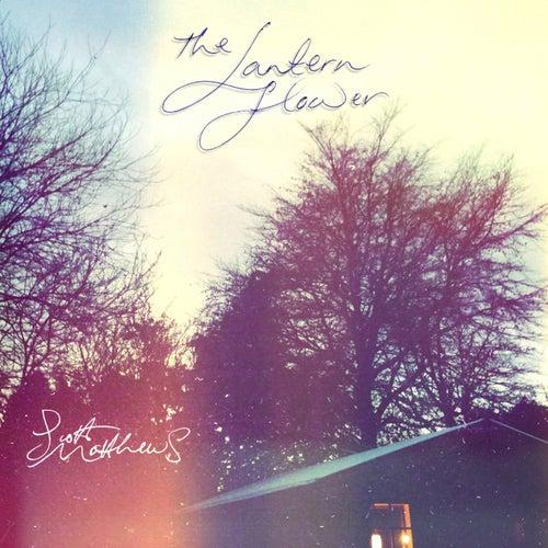 Play & Download The Lantern Flower by Scott Matthews | Napster