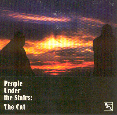 Cat by People Under The Stairs