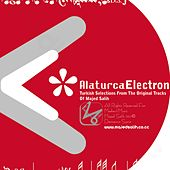 Alaturca Electron by Majed Salih