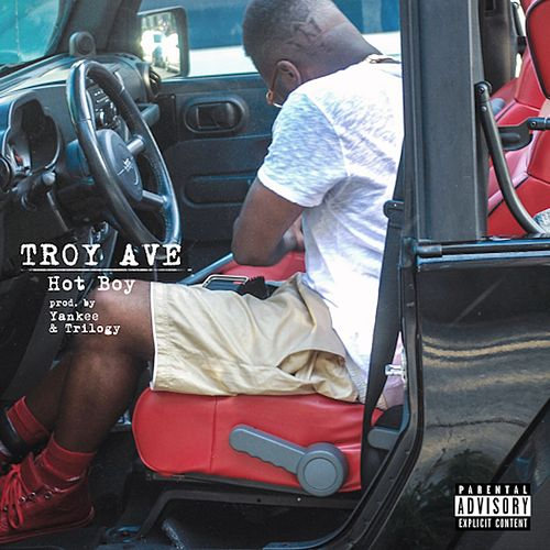 Play & Download Hot Boy - Single by Troy Ave | Napster
