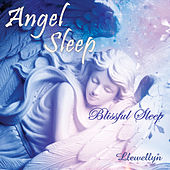 Angel Sleep - Blissful Sleep by Llewellyn