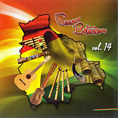 Play & Download Surcos Bolivianos Vol. 14 by Various Artists | Napster