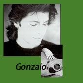 Gonzalo by Gonzalo