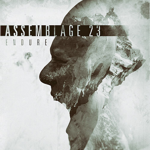Play & Download Endure by Assemblage 23 | Napster