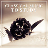 Classical Music to Study – Easy Exam, Classical Instruments to Study, Music for Concentration by Exam Study Music Set