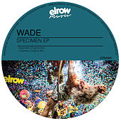 Play & Download Specimen by Wade | Napster