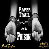 Paper Trail or Prison by Paul Taylor