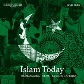 Islam Today by Tito Rinesi