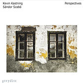 Play & Download Perspectives by Kevin Kastning | Napster