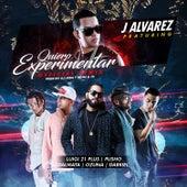 Play & Download Quiero Experimentar (Remix) by J. Alvarez | Napster