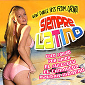 Play & Download Siempre Latino by Various Artists | Napster