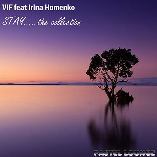 Play & Download Stay: The Collection by Vif | Napster