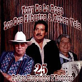 25 Polkas Huapangos y Redobas by Various Artists