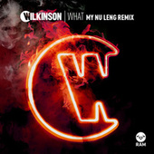 Play & Download What by WILKINSON | Napster