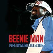 Beenie Man​ ​Pure Diamond Collection by Beenie Man