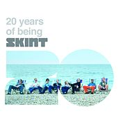 20 Years of Being Skint by Various Artists