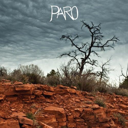 Paro by Brice Randall Bickford