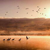 Play & Download Lago by Lago | Napster
