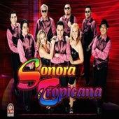Has De Volver by Sonora Tropicana