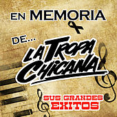 Play & Download Sus Grandes Exitos by La Tropa Chicana | Napster