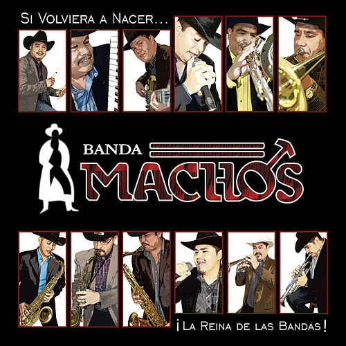 Play & Download Si Volviera A Nacer by Banda Machos | Napster