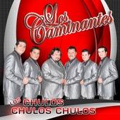 Los Chulos, Chulos, Chulos by Los Caminantes