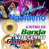 Play & Download Especial Navideno A Ritmo de Banda, Norteno y Grupero by Various Artists | Napster