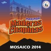 Mosaico 2014. Música de Guatemala para los Latinos by Marimba Maderas Chapinas