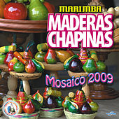 Mosaico 2009. Música de Guatemala para los Latinos by Marimba Maderas Chapinas
