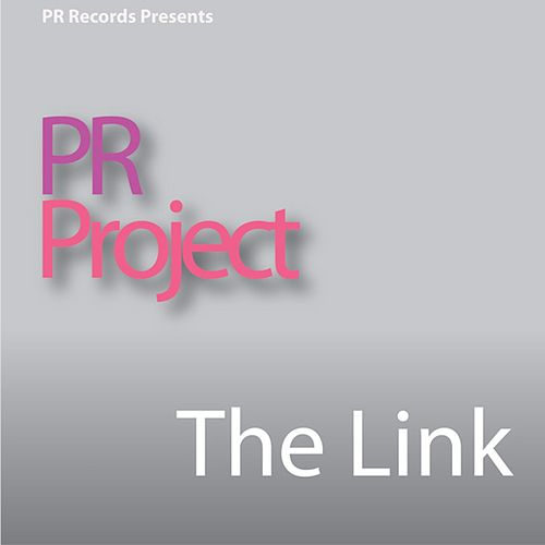Play & Download The Link by PR Project | Napster