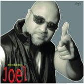 Prisoner of Love by Joel