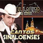 Play & Download Cantos Sinaloenses by El Lobito De Sinaloa | Napster