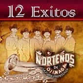 Play & Download 12 Exitos by Nortenos De Ojinaga | Napster