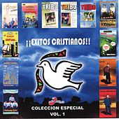 Play & Download Exitos Cristianos, Vol. 1 by Various Artists | Napster