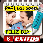 Papi Feliz Dia 6 Exitos by Various Artists