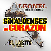 Play & Download Sinaloenses De Corazon by Various Artists | Napster