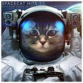 Play & Download Spacecat Hits 1 (Best EDM Tunes from Around the Universe) by Various Artists | Napster