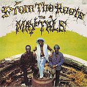 Play & Download From the Roots by The Maytals | Napster
