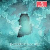 Play & Download Haydn: Piano Trios, Vol. 7 by Mendelssohn Piano Trio | Napster