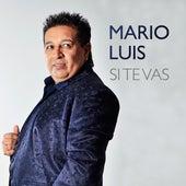 Si Te Vas by Mario Luis
