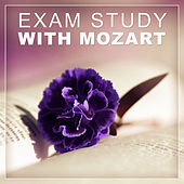 Play & Download Exam Study with Mozart – Classical Music to Study, Inspiration Music, Mozart, Beethoven Songs, Music to Study by Various Artists | Napster