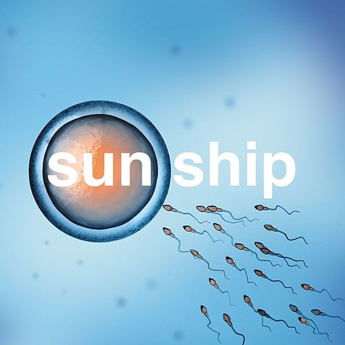 Play & Download The Sun Ship by The Brian Jonestown Massacre | Napster
