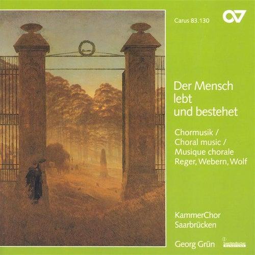 Play & Download WOLF, H.: 6 Geistliche Lieder / REGER, M.: 8 Geistliche Gesange / WEBERN, A.: Entflieht auf leichten Kahnen (Saarbrucken Chamber Choir, Grun) by Georg Grun | Napster