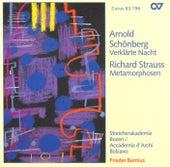 SCHOENBERG: Verklarte Nacht / STRAUSS, R.: Metamorphosen (Bozen String Academy, Bernius) by Frieder Bernius
